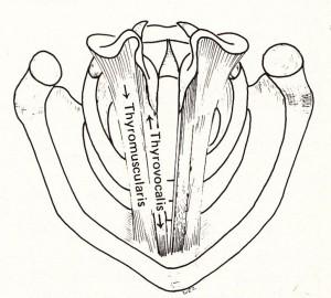 図3-47